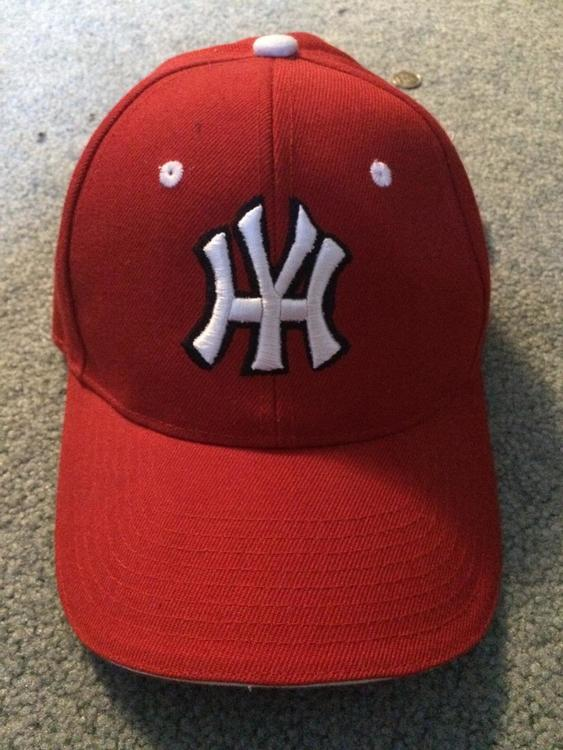 New Yankee Hater Hat Expired Baseball Hats Sidelineswap