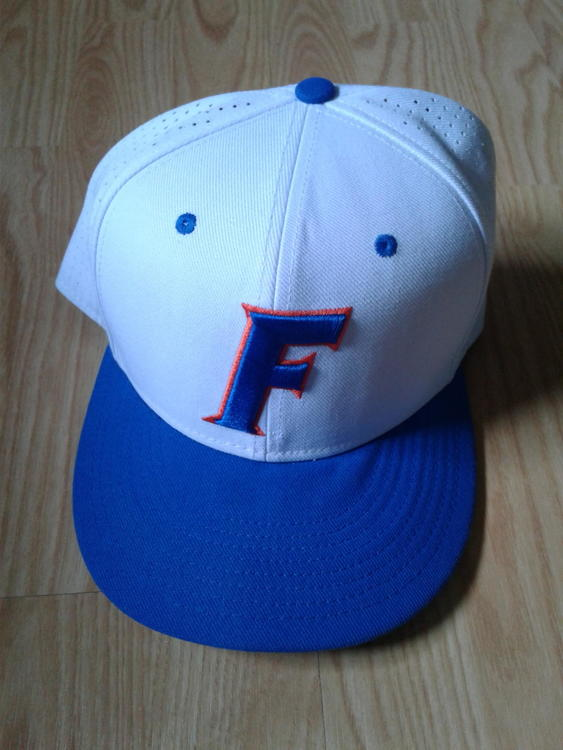 Florida Gators Nike Vapor Hat (7 3 4