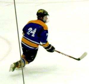 Warrior Rare Alpha Dx Stick Int Lh Sold Hockey