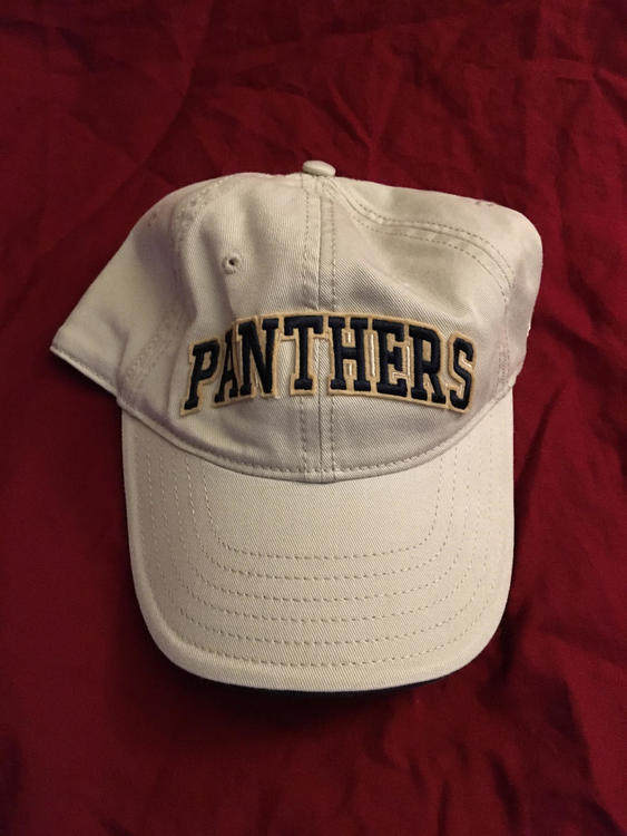 321d5feee Pittsburgh PITT Panthers Adjustable NCAA Baseball Hat
