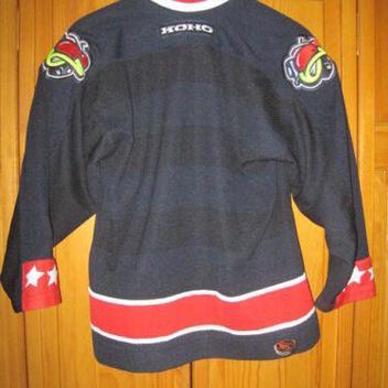 online retailer c3db3 0000a Columbus Blue Jackets hockey jersey kids boys L XL Koho NHL. Related Items