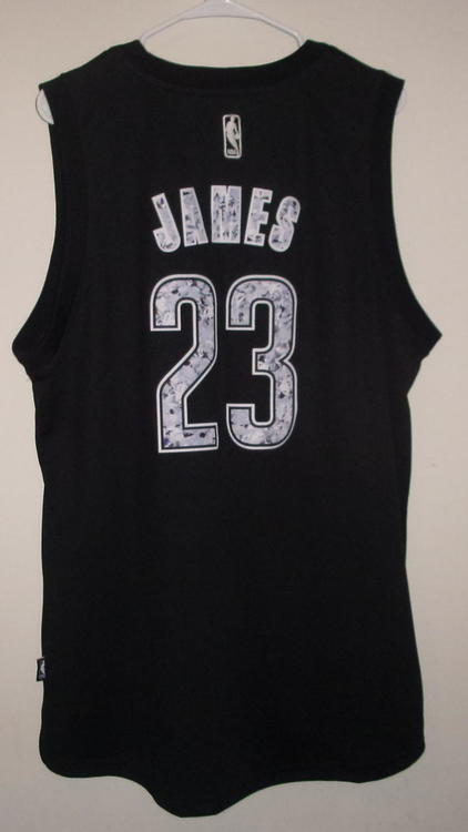 the latest 6f11a 79f97 LeBron James (Cleveland Cavaliers) Jersey (Adult-XL) (NWT)