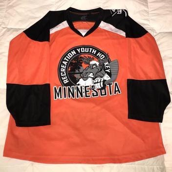 newest 9545a f699d Vintage Minnesota Wild Marian Gaborik #10 (Large) NHL ...