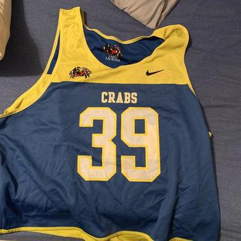 new style 04d3d 50792 Nike New University Albany Great Danes #16 Jersey LG ...