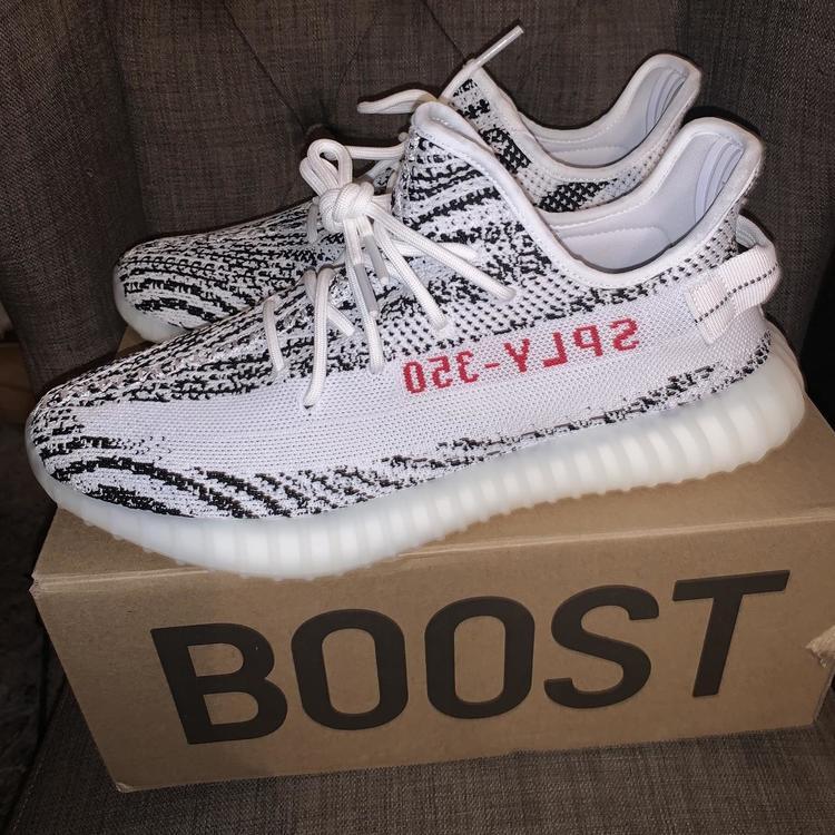 adidas zebra yeezy